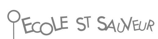 Logo St Sauveur
